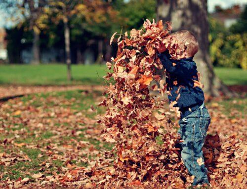 Styr på tøjet til efterår og vinter